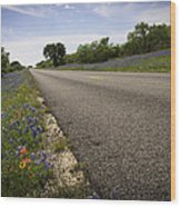 Life Is A Highway  Wood Print by Lynn Bauer
