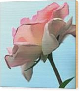 Life Is All Roses And Blue Sky Wood Print