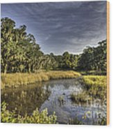 Life On The Marsh Wood Print