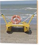 Lifeboat Wood Print