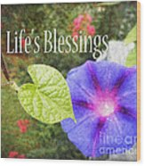 Lifes Blessings Wood Print by Eva Thomas