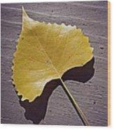 Life's Treasures  Wood Print