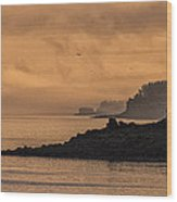 Lifting Fog At Sunrise On Campobello Coastline Wood Print