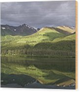 Light Along The Denali Highway Wood Print