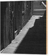 Light And Shadow - Venice Wood Print