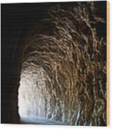 Light At The End Of The Tunnel Wood Print