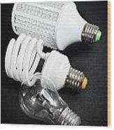 Light Bulb Generations Wood Print