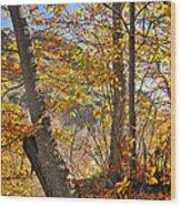 Light Days Wood Print