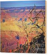 Light In The Canyon Wood Print