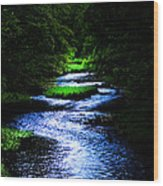 Light In The Creek Wood Print