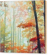 Light In The Forest Wood Print by William Schmid