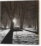 Light In The Shadows Wood Print