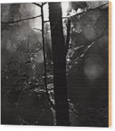 Light Of The Morn Wood Print