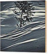 Light On The Snow Wood Print