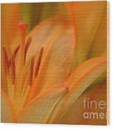 Light Orange Wood Print