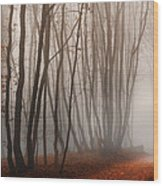 Light Path Wood Print by Dobromir Dobrinov