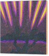 Light Penetrates The Gloom Wood Print