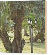 Light Post Wood Print
