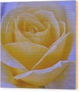 Light Rose Wood Print by Saifon Anaya