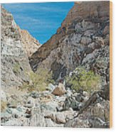 Light Side And Dark Side In Big Painted Canyon In Mecca Hills-ca Wood Print