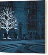 Light Snow Wood Print