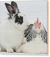 Light Sussex Bantam Hen And Rabbit Wood Print