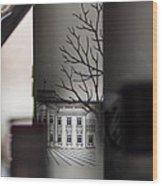 Light Through A Bottle Wood Print