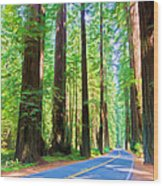 Light Through The Redwoods Wood Print