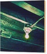 Lightbulb And Cobwebs Wood Print