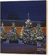 Lighted Trees With Snow Wood Print