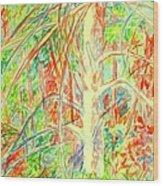 Lightening Struck Tree Again Wood Print