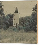 Erie Lighthouse Among The Trees Wood Print