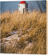 Lighthouse Amongst The Tall Grass Wood Print