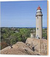 Lighthouse At Mamallapuram Wood Print