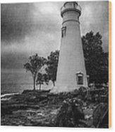 Lighthouse At Marblehead Wood Print