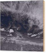 Lighthouse Beach Dunes Bw Wood Print