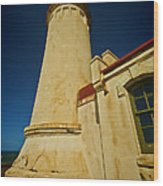 Lighthouse Down Wood Print