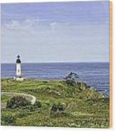 Lighthouse From Salal Hill Wood Print