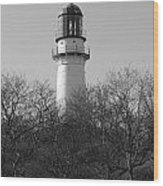 Lighthouse In Trees Wood Print