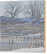 Lighthouse Of Lake Michigan At Muskegon Lake Harbor Channel Wood Print by Rosemarie E Seppala