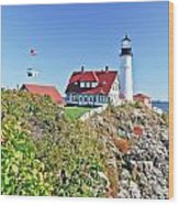Lighthouse Of Maine Wood Print