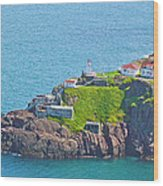 Lighthouse On Point In Signal Hill National Historic Site In Saint John's-nl Wood Print