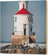 Lighthouse On The Rocks Wood Print