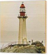 Lighthouse Park II Wood Print