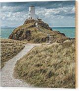 Lighthouse Path Wood Print