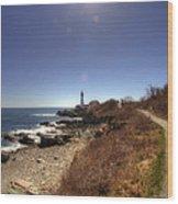 Lighthouse Path Wood Print by Joann Vitali
