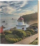Lighthouse Walk Wood Print by Adam Jewell