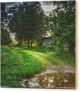 Lighting The Pathway Home Wood Print by Paul Herrmann