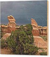 Lightning Devils Garden Escalante Grand Staircase Nm Utah Wood Print