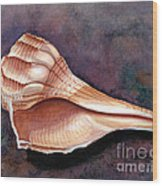 Lightning Whelk Wood Print